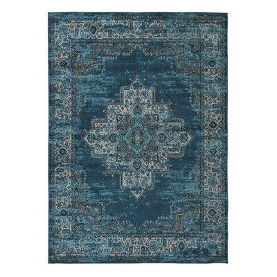 Hemel Blue/Teal Area Rug Rug Size: 53 x 73