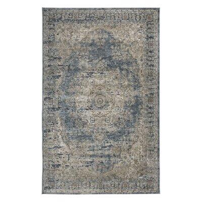 Helene Blue/Tan Area Rug Rug Size: 8 x 10