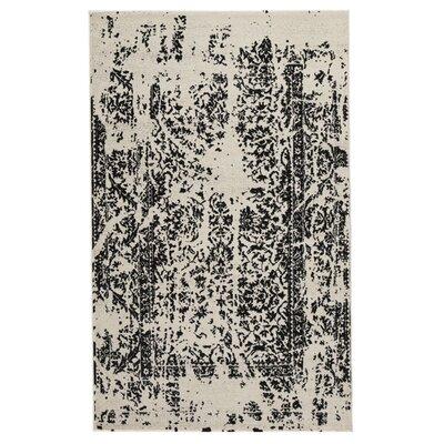 Palethorp Black/White Area Rug Rug Size: 5 x 8