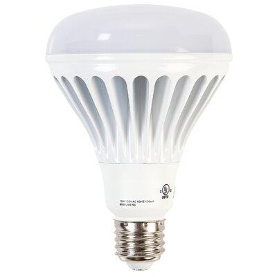 Ohyama 13W E26/Medium LED Light Bulb