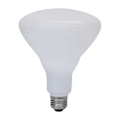 17W LED Light Bulb
