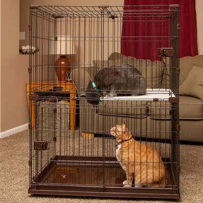 Animal Wire Cage with Wooden Perch and Hammock