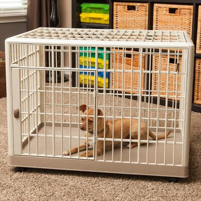 Plastic Small Animal Cage Size: Mini (24.7 H x 22.2 W x 32.5 L)