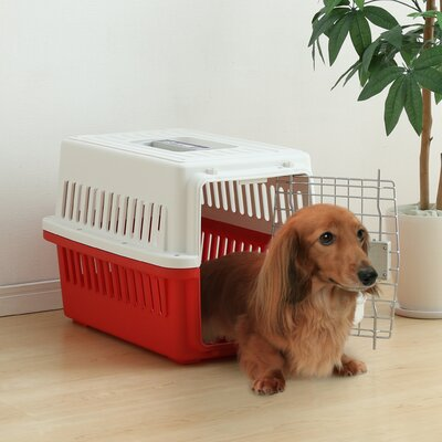 Deluxe Travel Pet Carrier Color: Red, Size: Medium (20 H x 18.5 W x 26.4 L)