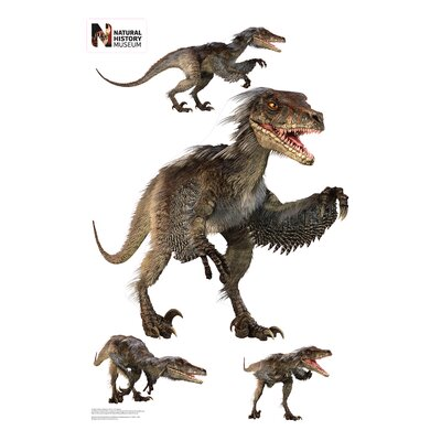 Raptor Layout Wall Decal