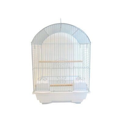 Round Dome Top Bird Cage Color: White