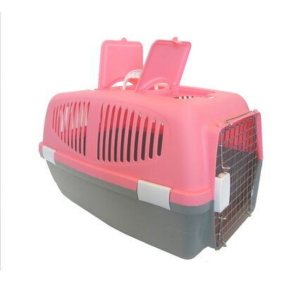 Plastic Pet Carrier Size: Medium (13 H x 13 W x 21 L), Color: Pink