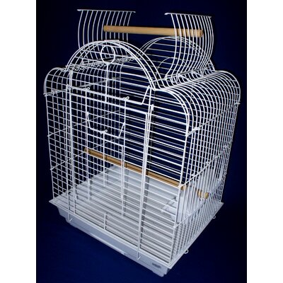 Open Scallop Play Top Bird Cage Color: White Stand