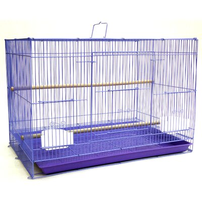 Small Bird Cage Color: Purple