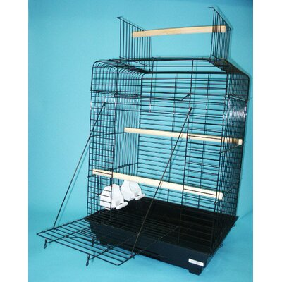 Open Play Top Small Parrot  Bird Cage Color: Black