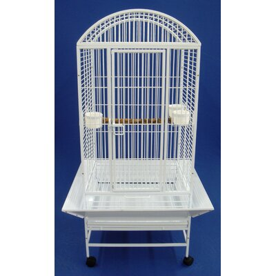 Narrow Dome Top Parrot Bird Cage Color: White
