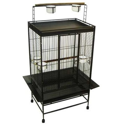 Olivia Play Top Parrot Bird Cage Color: Antique Silver
