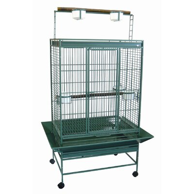 Olivia Play Top Parrot Bird Cage Color: Green