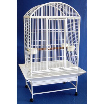 Wide Dome Top Parrot Bird Cage Color: White