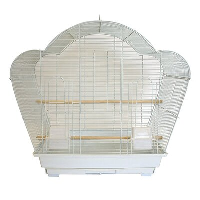 Shell Top Small Bird Cage Color: White
