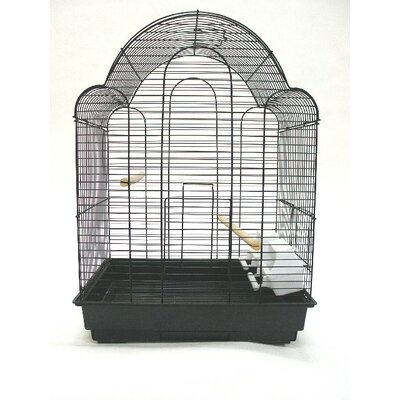 Shell Top Bird Cage Color: Black