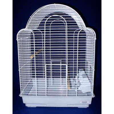 Shell Top Bird Cage Color: White