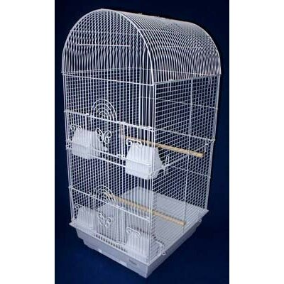 Tall Round 4 Perch  Bird Cage Color: White