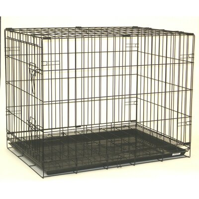 Foldable Pet Crate Size: 48 (31 H x 27 W x 48 L)