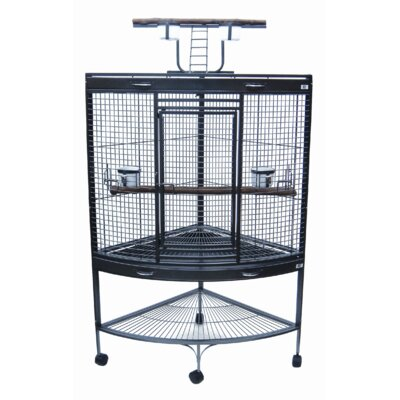 Parrot Bird Cage Color: Antique Silver