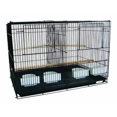 Bird Cage with Divider Color: Black