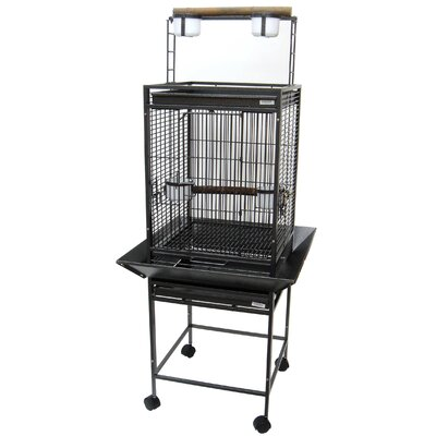 Play Top Parrot Bird Cage with 2 Feeder Doors Color: Antique Silver