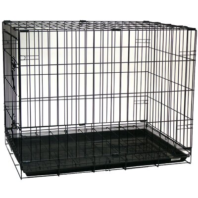 Foldable Light Duty Door Pet Crate Size: 30 (21 H x 19 W x 30 L)