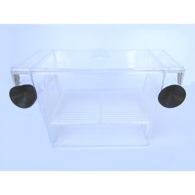 Brand New Fish Hatchery Size: 2.75 H x 5 W x 2.75 D
