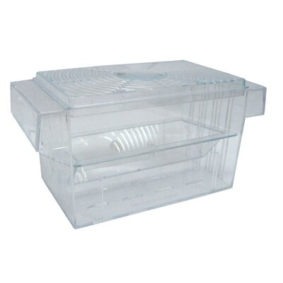 Brand New Fish Hatchery (Set of 2) Size: 3.5 H x 6.5 W x 3 D
