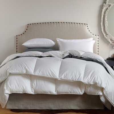Filled Fall Midweight Down Duvet Insert Size: Queen