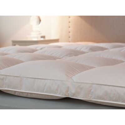 Bordered Baffled 2.5 Down Mattress Topper Size: Twin