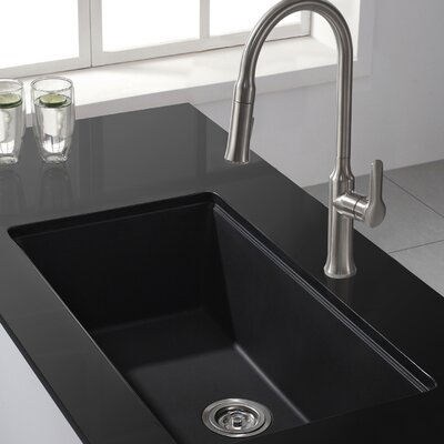 Kitchen Combos 31 x 17.09 Undermount Kitchen Sink with Faucet Faucet Finish: Stainless Steel