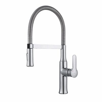 Nola Pull Down Single Handle Kitchen Faucet Finish: Chrome