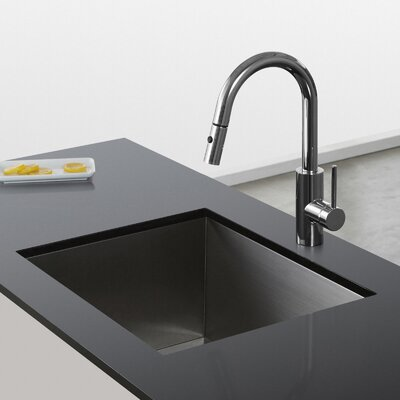 Oletto Single Handle Pull Down Kitchen Faucet Finish: Chrome