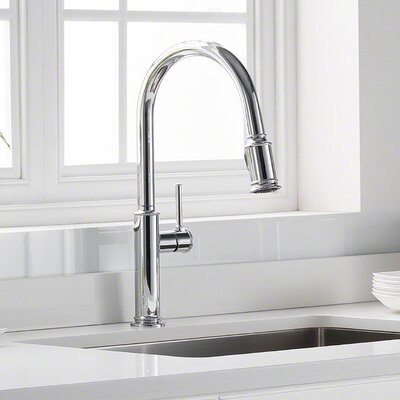 Sellette Pull Down Single Handle Kitchen Faucet Finish: Chrome
