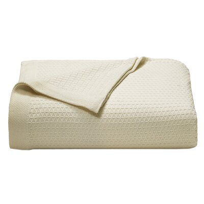 Baird Cotton Blanket Size: King, Color: Ivory