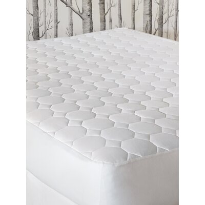 Tenor Cotton Mattress Pad Size: Twin