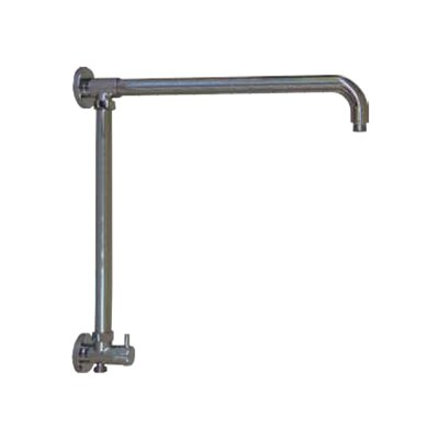 Vertical Riser with 17 Shower Arm and Built in Diverter Finish: Chrome