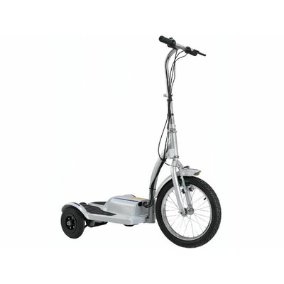 Big Toys TRX Personal Transporter 300 Watt Electric Scooter TRX-E1050