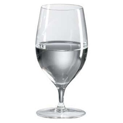 Classics 14 oz. Tasting / All Purpose Glass (Set of 4)