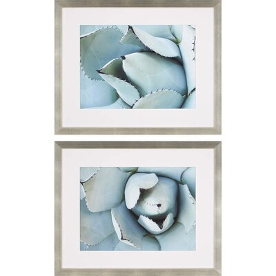 'Agave Detail I' 2 Piece Framed Graphic Art Print Set