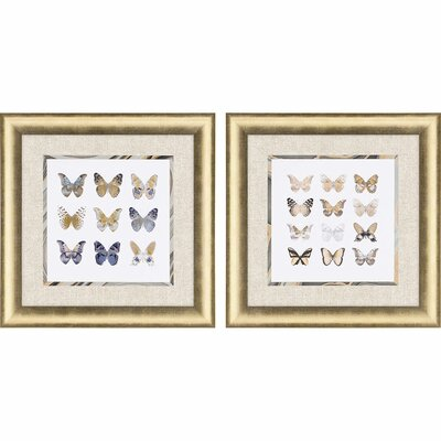 'Butterfly Study' 2 Piece Framed Graphic Art Print Set