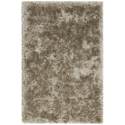 Joellen Brown Area Rug Rug Size: 79 x 106