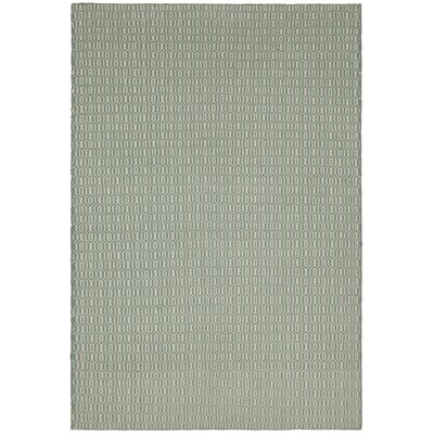 Diva Green Area Rug Rug Size: 5 x 76