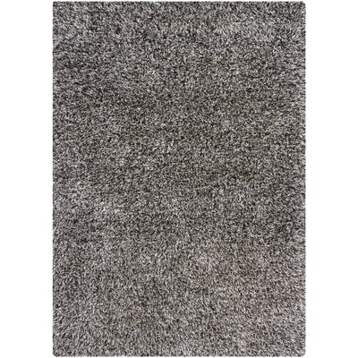 Allegany Dark Grey Area Rug Rug Size: Rectangle 311 x 511