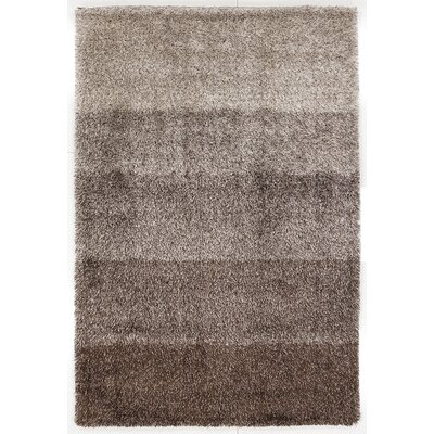 Youngberg Grey Area Rug Rug Size: Rectangle 79 x 106