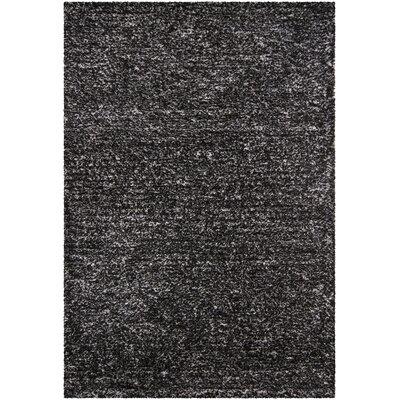 Yiwei Black Area Rug Rug Size: 5 x 76