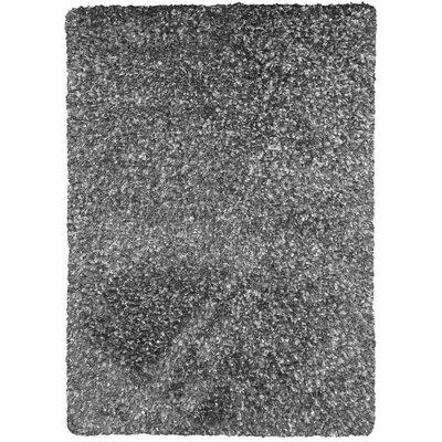 Berinda Silver Area Rug Rug Size: 5 x 76