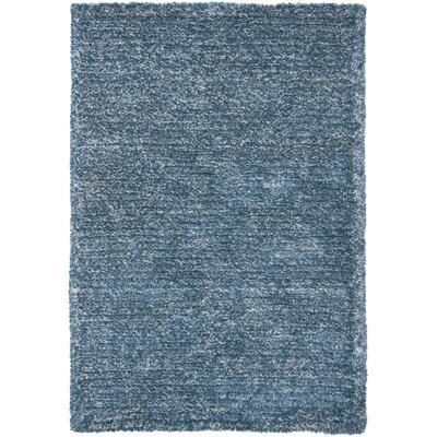 INT Blue Area Rug Rug Size: 5 x 76