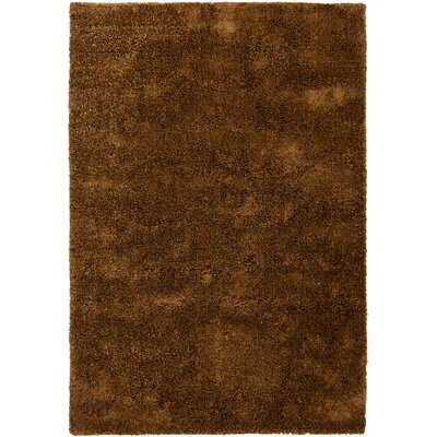 Trey Contemporary Hand Woven Rug Rug Size: 5 x 76